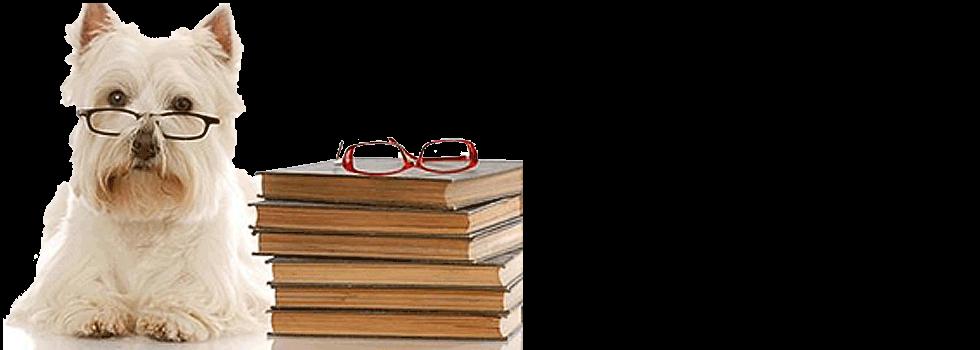 occhiali da vista completi di montatura